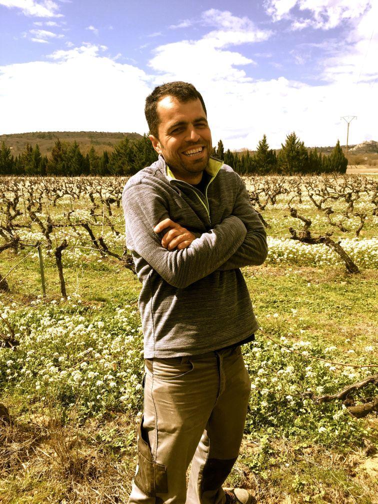 Garreta vingård